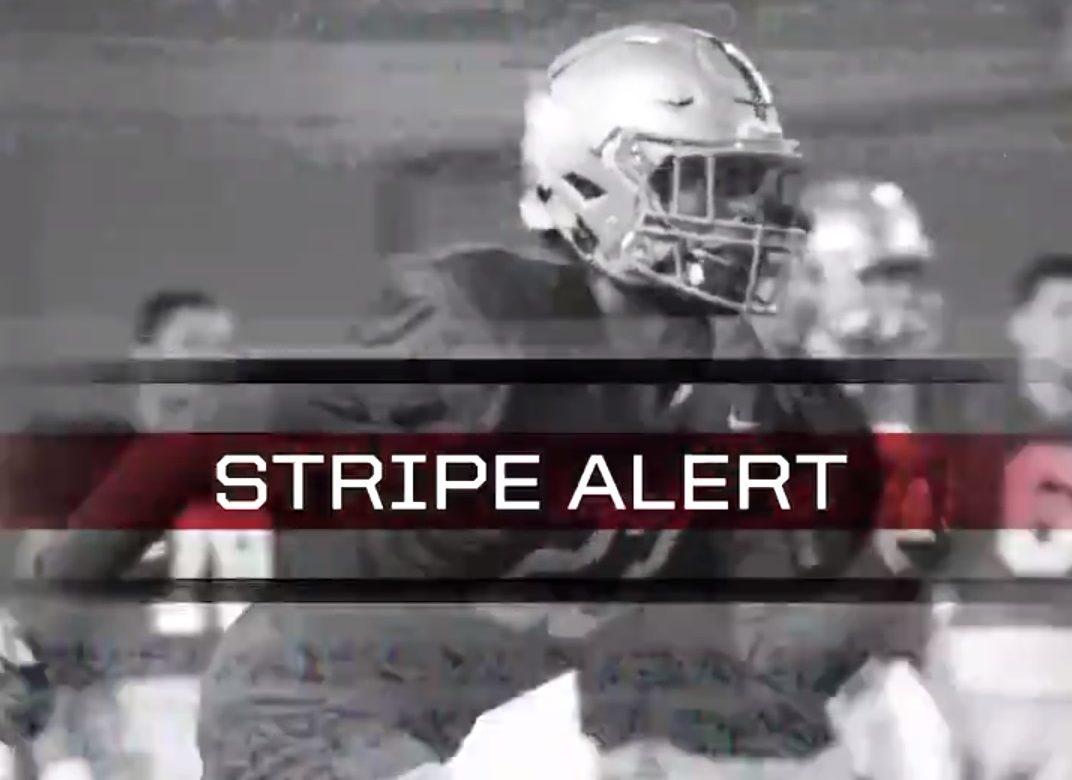 Ohio State Football Black Stripe Buckeyes