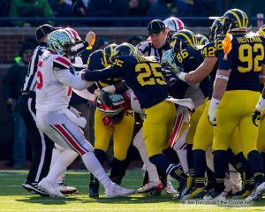 050 Fight Ohio State Michigan 2013